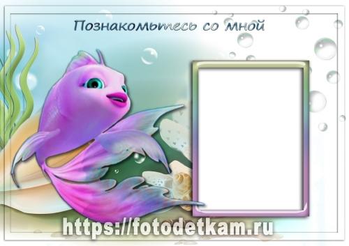 портфолио забавные рыбки портфолио для девочек скачать